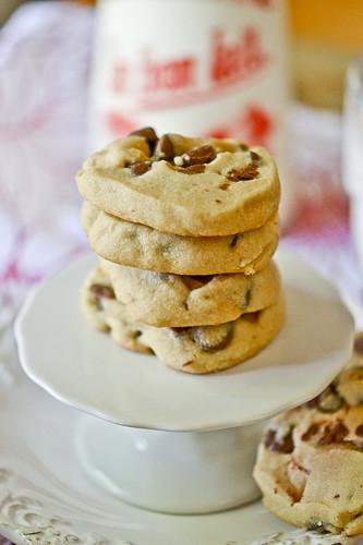 Peanut Butter Chocolate Chip Shortbread 1
