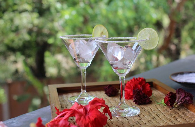 paticheri fresh hibiscus margaritas (1)