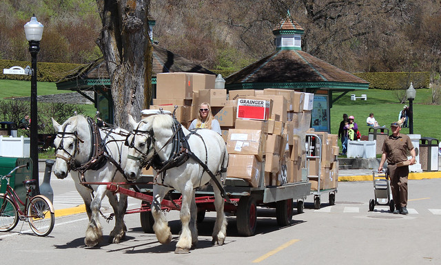 UPS Delivery on Mackinac