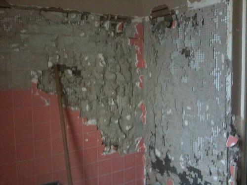 Bathroom Remodel: Day One, Shower