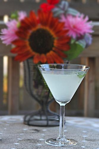 Rasp Martini 2