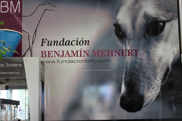 Fundación Benjamín Mehnert (ensayo)