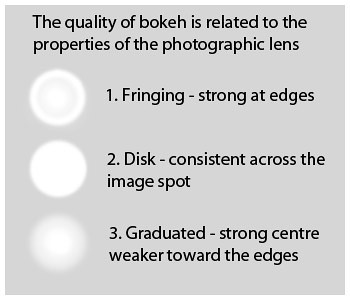 Bokeh characteristics vary. Here generalizations are shown, but bokeh circles are rarely as well defined as this.