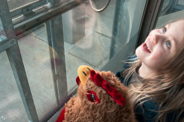 sadie and chickener tram 7