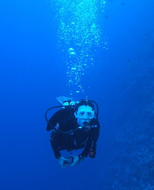 Wakatobi: Pristine Coral (1/6)