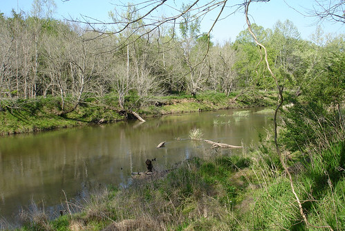 Upper Neuse Greenway 103
