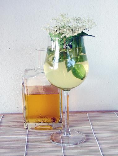 Elderflower - Sambuco - Hollunder Cordial