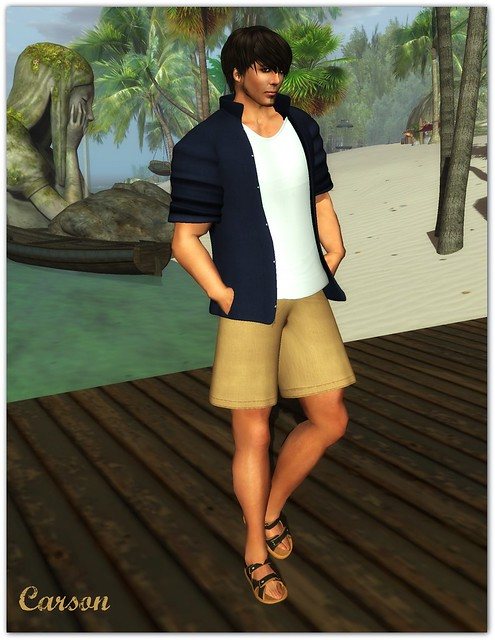 22769 - Blue Shirt and Tee, Beige Postman Shorts, Duh! - Sandals