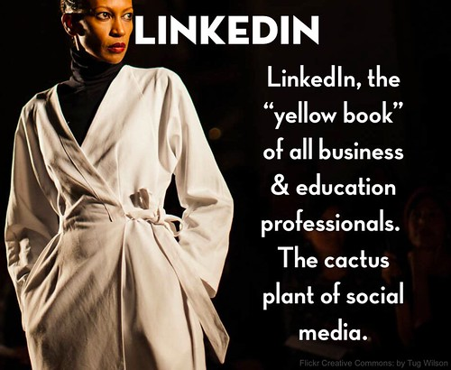 LinkedIn by The Daring Librarian