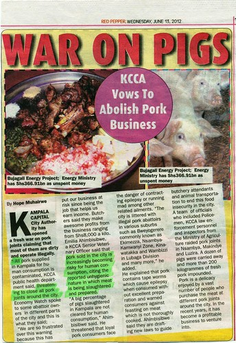 War on Pigs: Clipping from the Red Pepper newspaper (Uganda)