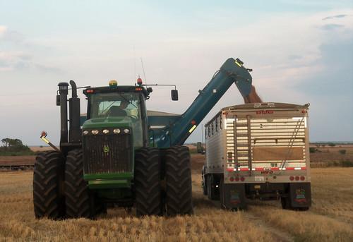 Oak loads one of our last truck loads in Olney