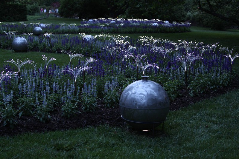 Longwood Gardens - Light
