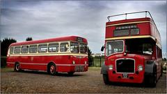 Barry Festival of Transport