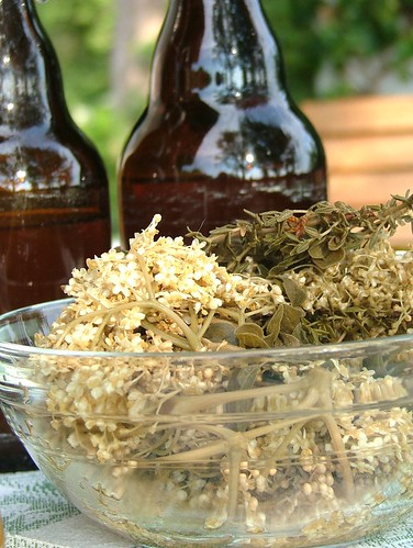 Elderflower and Herb Vinegar- Hollunder und Kräuter essig - Fläder och ört ättika -