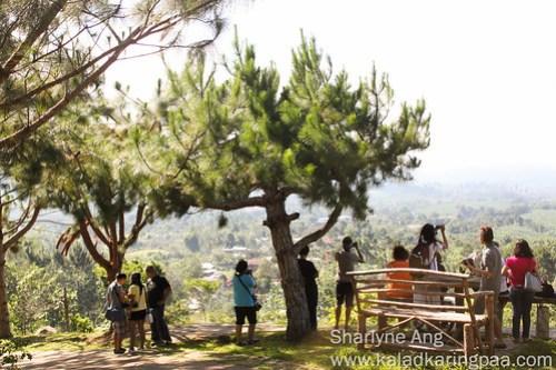 DFAT participants enjoying the view of Mt. Apo