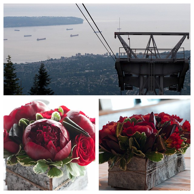 Grouse Mountain Private Event