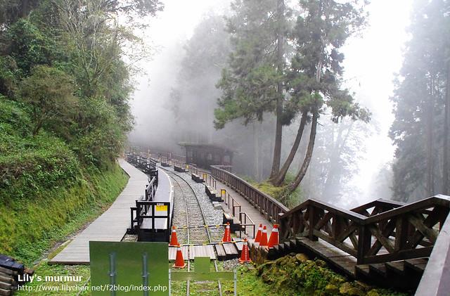 在霧氣中的神木站,很美...