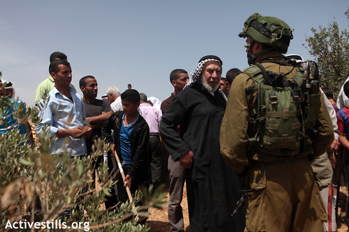 Direct action to reclaim lands, Tuqu', West Bank, 26.05.2012