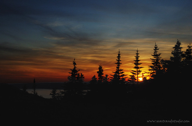 Newfoundland Sunset