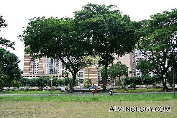 The graveyard with HDB flats in the backdrop