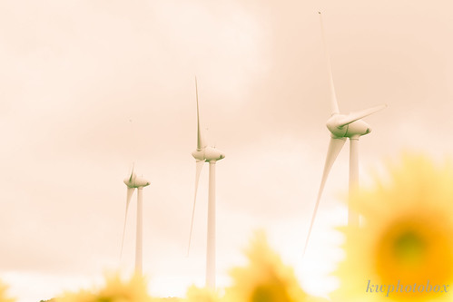 Hill of the wind by kwphotobox