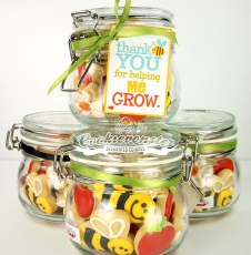 TQ teacher Bee summer themed Jars