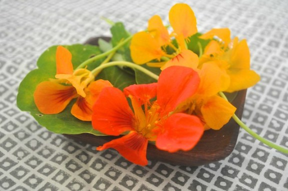 Nasturtium for the Perfect Fried Green Tomato Sandwich
