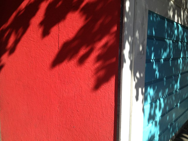 Tree shadows on red and blue walls