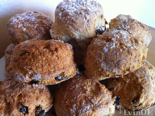 Fresh batch of fruit scones at Fenns Quay