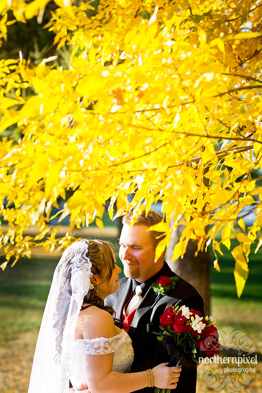 Melanie & Blake Wedding fall colors yellow leaves