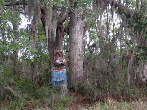 Boobie Tree