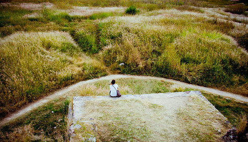 mil años de soledad by The Cookiemonster