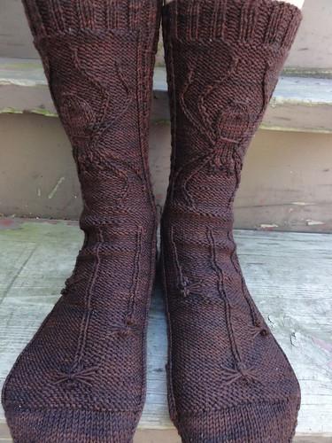 Spider Socks 1