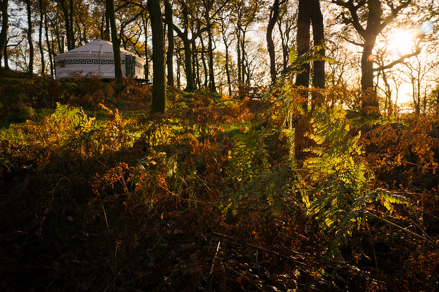 Ashlack Yurts 02