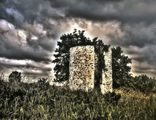 Abandoned Silo Gives Shelter to Tree During Storm