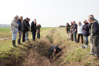 Farmers looking at ditch and sediment trap