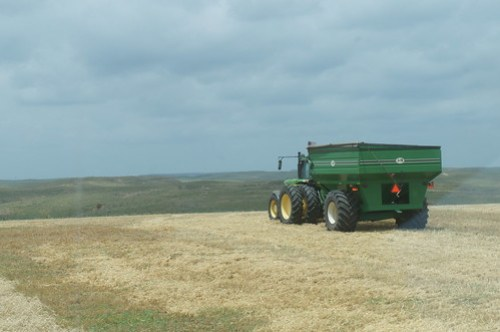 The grain cart heading down the field