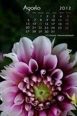 Calendario agosto