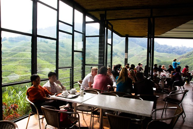 BOH tea plantation tea room