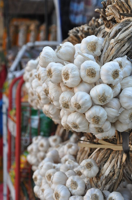 Ilocos garlic