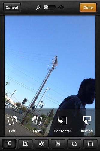 Camera Roll-3313
