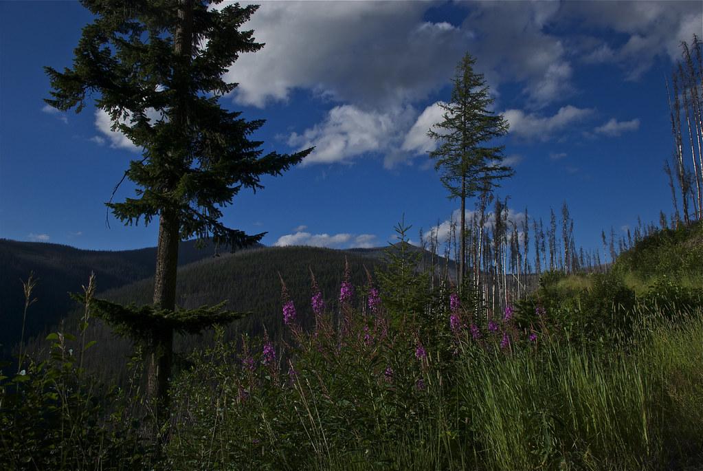 Thompson Peaks