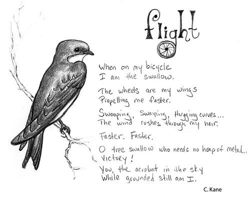 flight_poem
