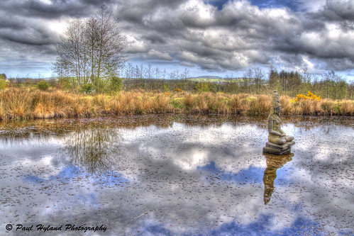 Peaceful Reflections by Paulie Hyland