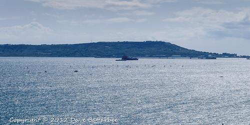 Olympic Sailing 7