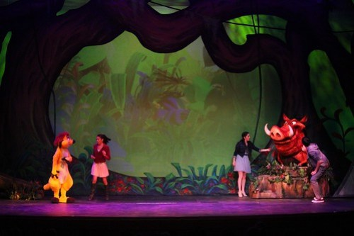 The Lion King - Wishes stage show