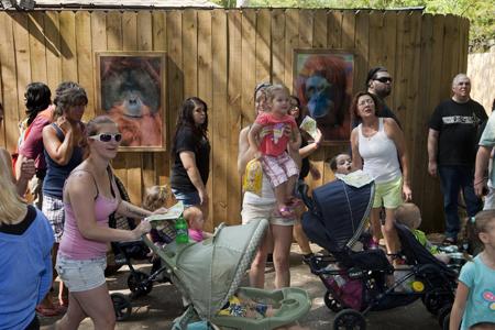 19h01 Martin Parr Zoo Atlanta Uti