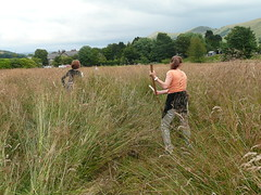 Opening up the long grass in Edale Orchard