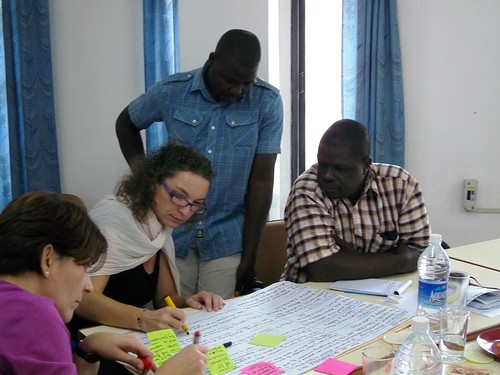 The imGoats Mozambique team works on a group exercise during the imGoats learning and reflection workshop