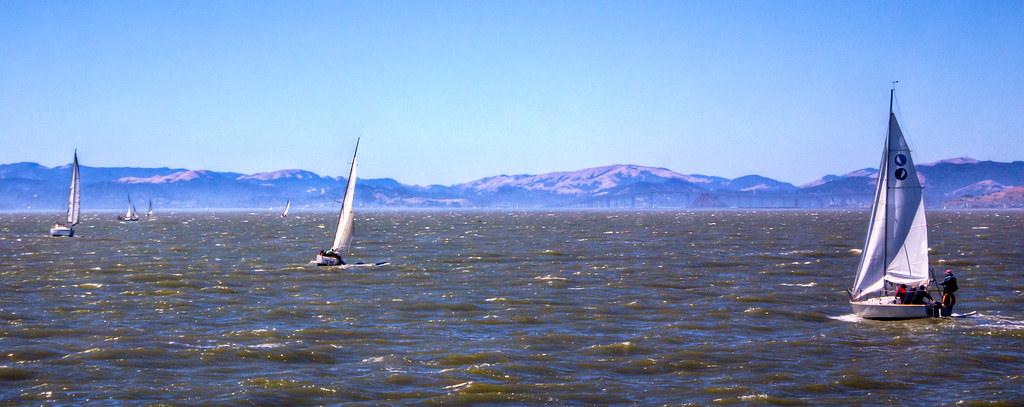 Sailboat Flotilla